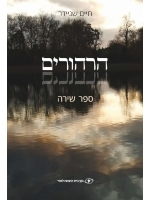 Hirhurim: Sefer Shira - Reflections (Hebrew)