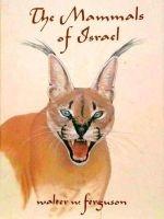 The Mammals of Israel