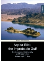 Aqaba-Eilat, the Improbable Gulf.