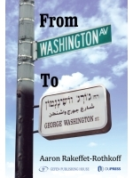 From Washington Avenue to Washington Street
